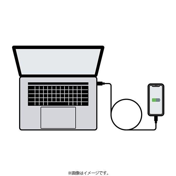 アウトレット SoftBank SELECTION USB Type-C Tough Cable with Lightning Connector / シルバー|paypaystore|07