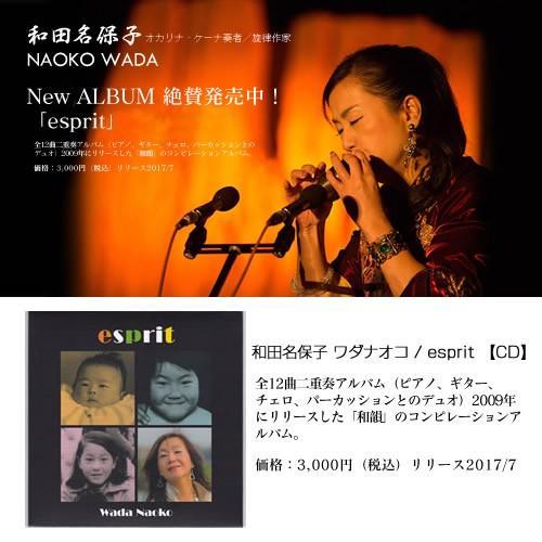 和田名保子 ワダナオコ / esprit 【CD】|pczakka