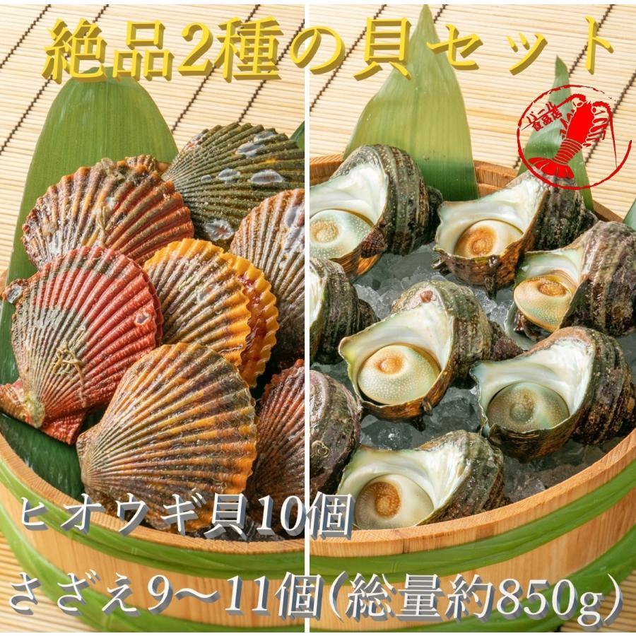 ヒオウギ貝10個、さざえ9~11個(総量約850g)絶品2種の貝セット /【アッパ貝 日の出貝 サザエ】|pearlshokuhinten