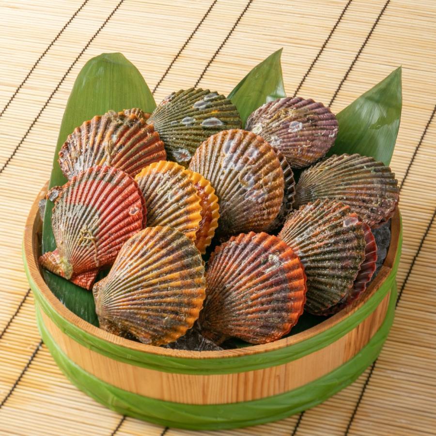 ヒオウギ貝10個、さざえ9~11個(総量約850g)絶品2種の貝セット /【アッパ貝 日の出貝 サザエ】|pearlshokuhinten|03