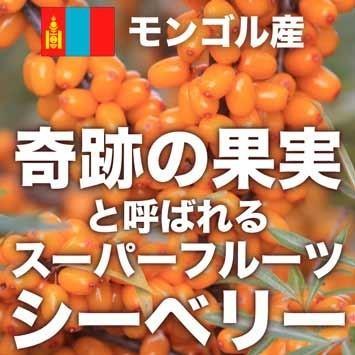 オメガ7高含有サプリメント モンゴル産『シーベリーオイル』90粒 pejapan 02