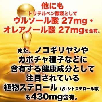 オメガ7高含有サプリメント モンゴル産『シーベリーオイル』90粒 pejapan 04
