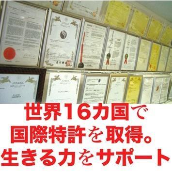 五葉の松種子SPNエキス『ブラック』90粒|pejapan|06