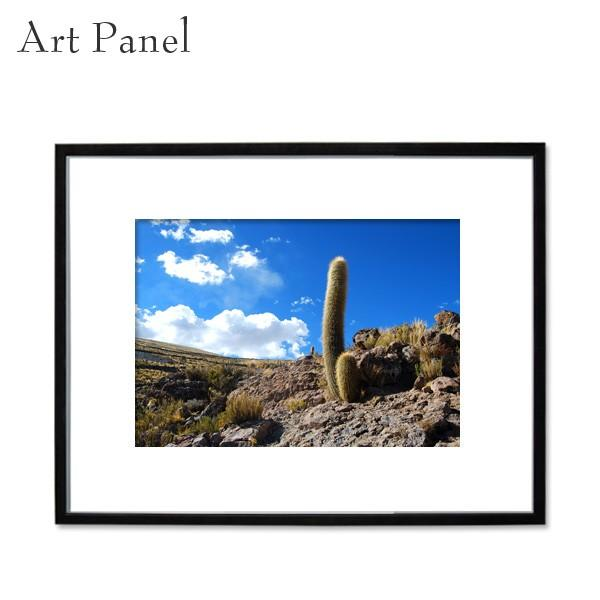 インテリアアートパネル 付属品充実 大きめ 壁掛け サボテン おしゃれ 風景 風景 額 写真 絵画 ポスター