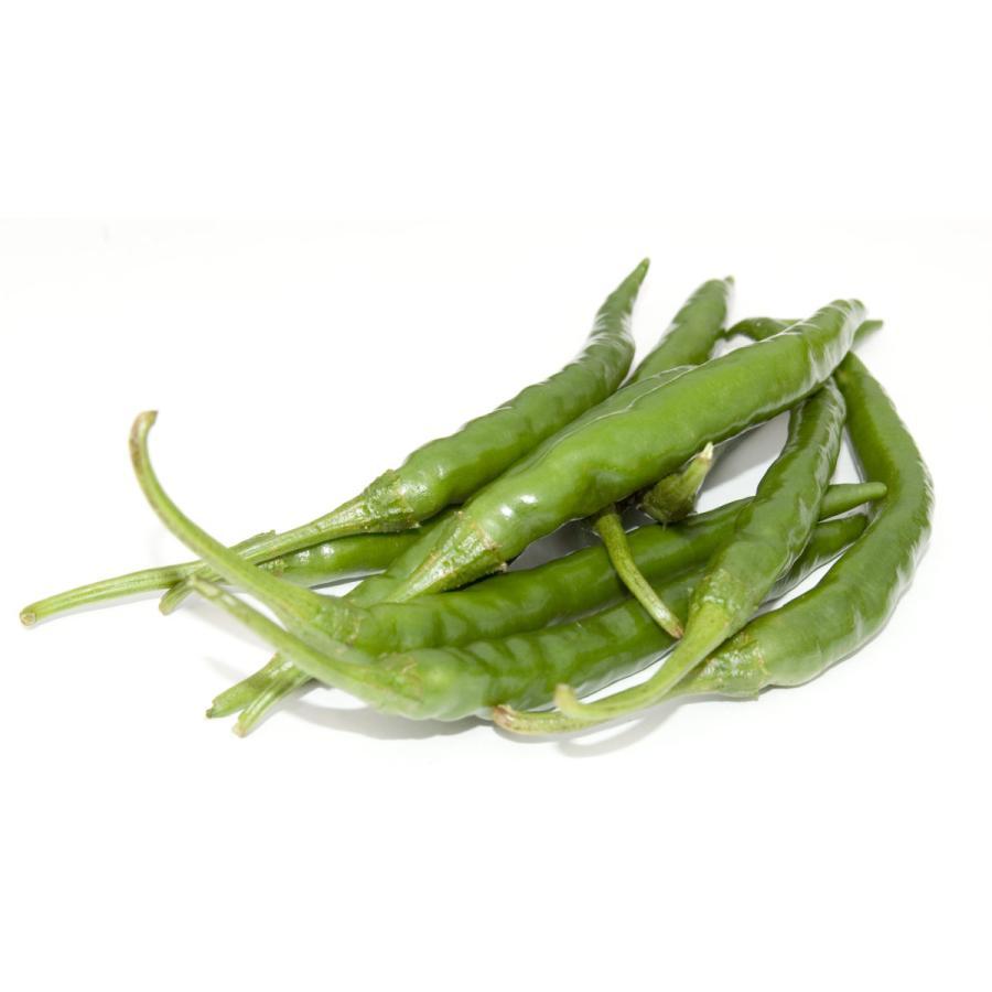 国産 生 青唐辛子 辛口 500g 生鮮品 千葉県産|pepperfriends|04