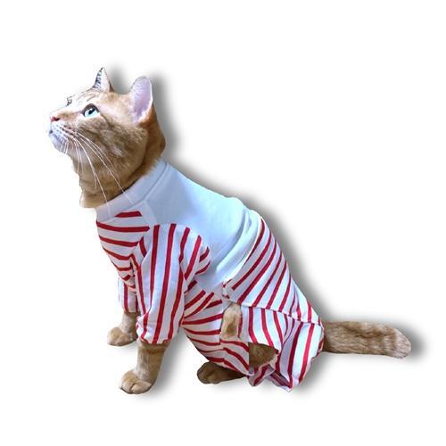 猫用術後服 術後ウェア 脱毛 保護服 長袖パンツ M|petanimals|02