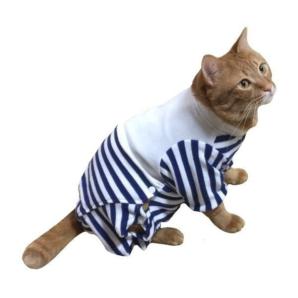 猫用術後服 術後ウェア 脱毛 保護服 長袖パンツ M|petanimals|03