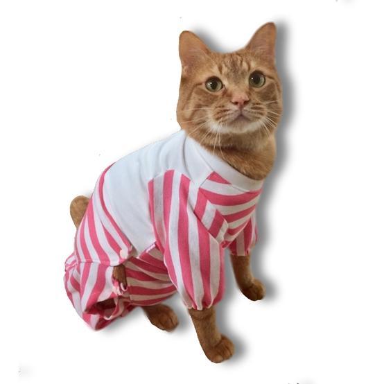 猫用術後服 術後ウェア 脱毛 保護服 長袖パンツ M|petanimals|04