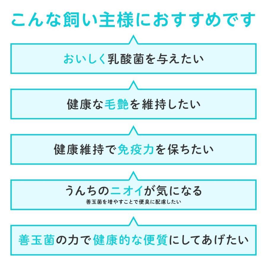 ベッツワン マルチ乳酸菌 犬猫用 細粒 60g(2g×30包)【2個セット】|petgo|04