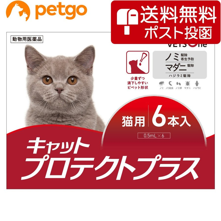 【10%OFFクーポン】【ネコポス(同梱不可)】ベッツワン キャットプロテクトプラス 猫用 6本 (動物用医薬品)|petgo