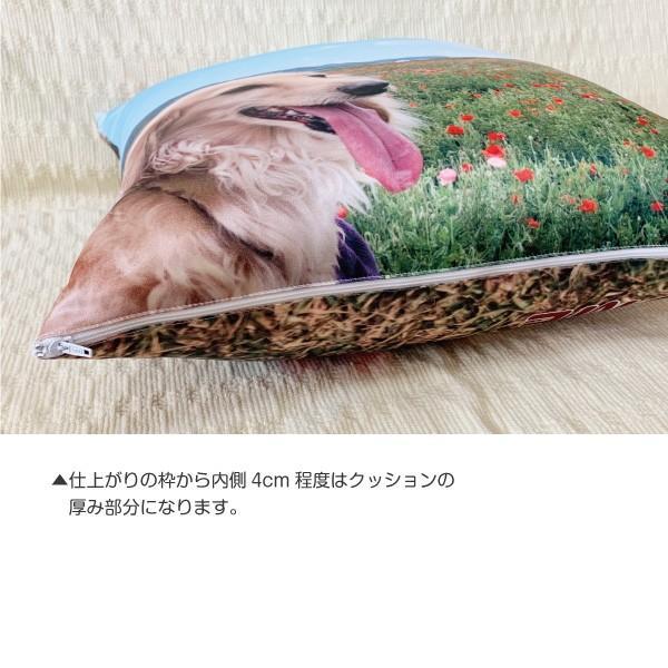 MYフォト オリジナル クッション 「ポリ綿仕様」45cm×45cm 全面印刷 切り抜き画像加工 petgp 08