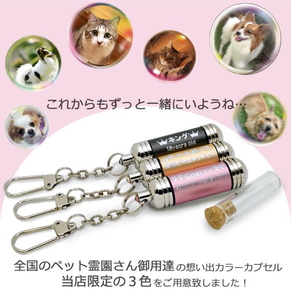刻印入り カラーカプセル【全3色】 キーホルダー  (ペット・犬・猫・遺骨・遺毛カプセル)|petie|05