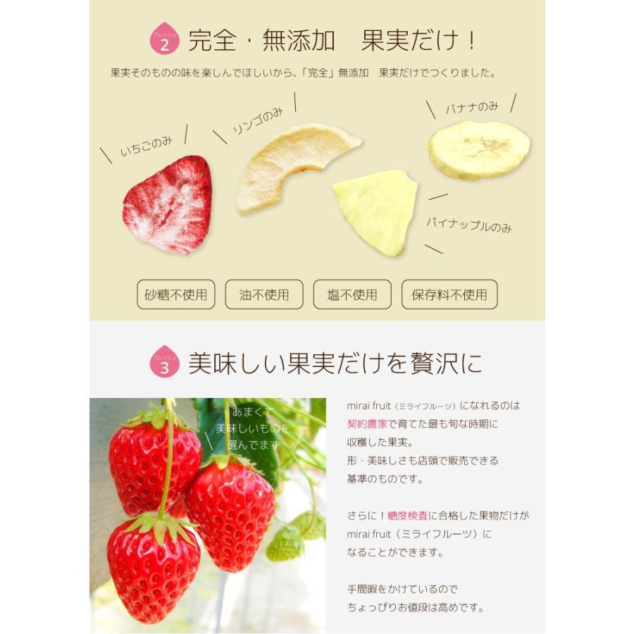 フリーズドライフルーツ 全種類セット 無添加 砂糖不使用 お菓子 ベビーフード いちご メロン|petittomall|04