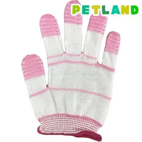 歯みがき手袋 ( 1枚入 )|petland