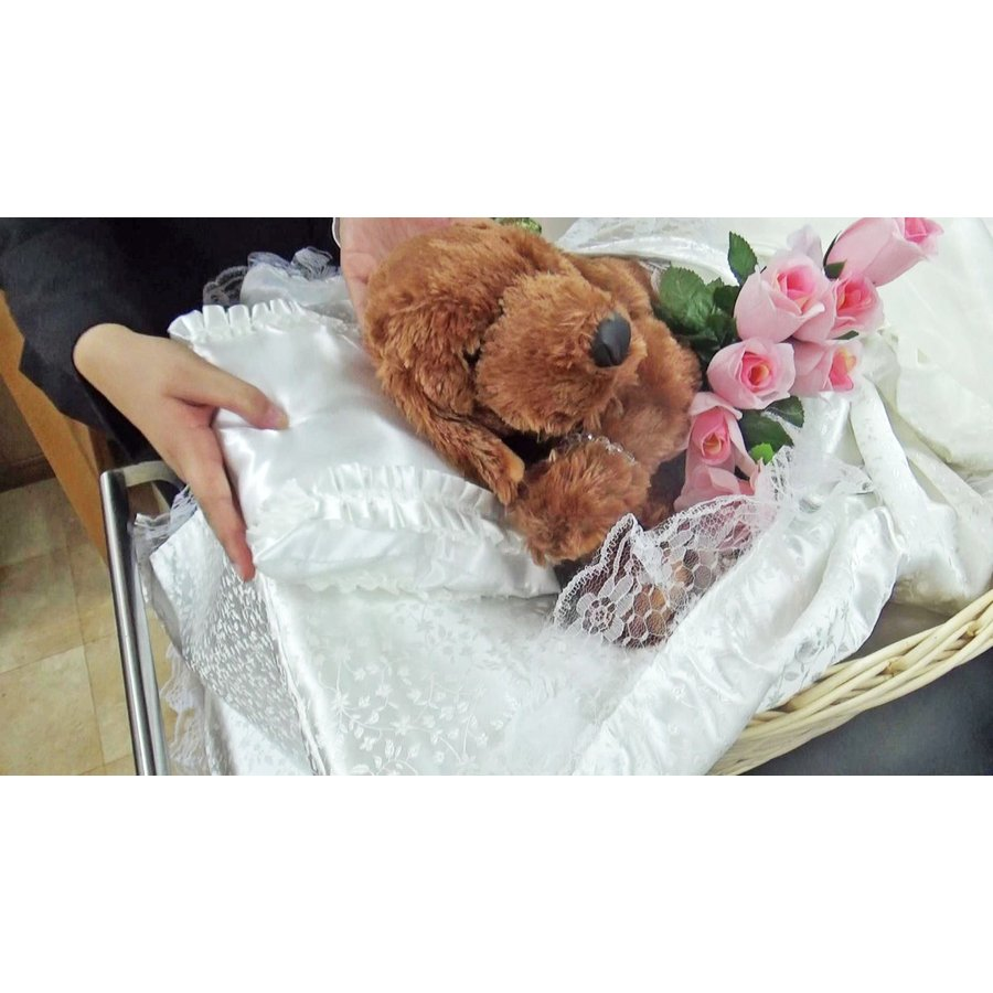 ご火葬までのペットの遺体安置は、このパーフェクト1つで充分! Mサイズ|petmemorial|12