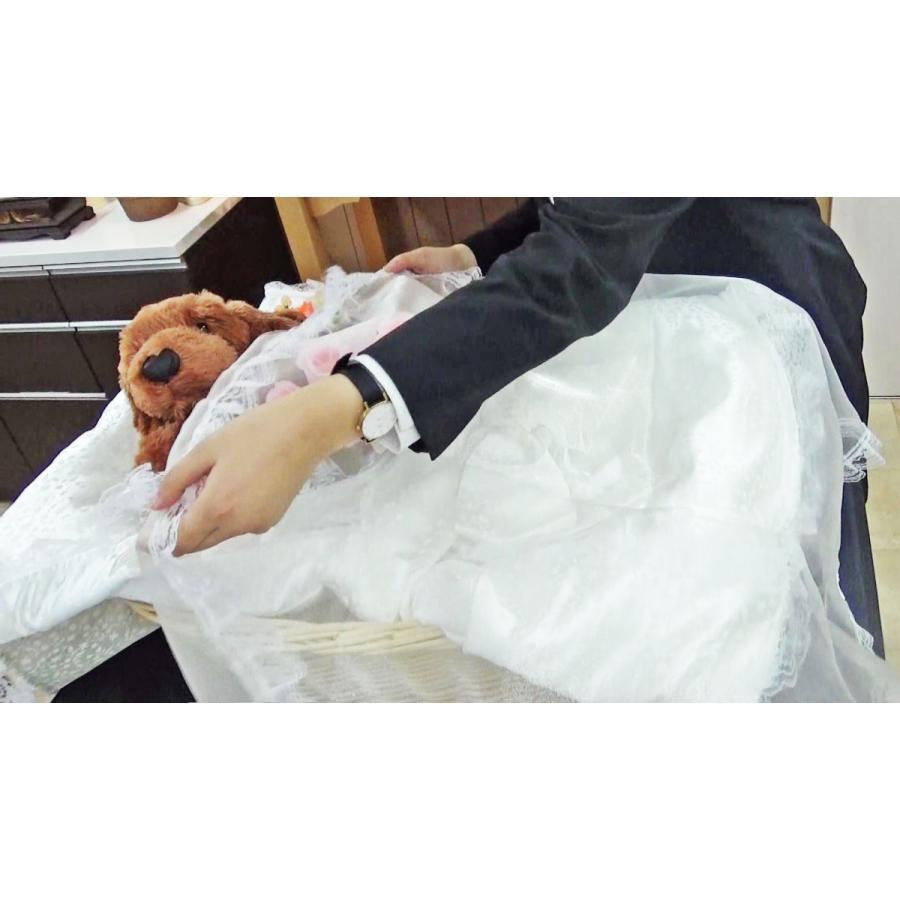 ご火葬までのペットの遺体安置は、このパーフェクト1つで充分! Mサイズ|petmemorial|13