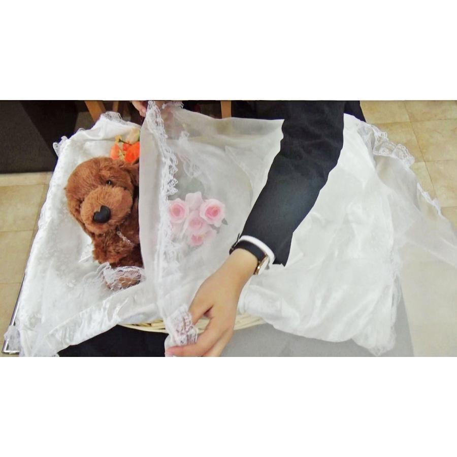 ご火葬までのペットの遺体安置は、このパーフェクト1つで充分! Mサイズ|petmemorial|15