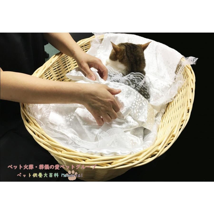 ご火葬までのペットの遺体安置は、このパーフェクト1つで充分! Mサイズ|petmemorial|09