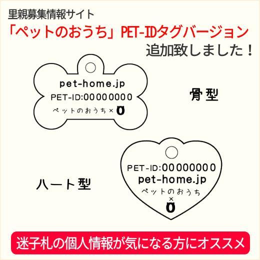 ペット用品 猫用品 ヒルズ プリスクリプション・ダイエット キャットフード 食事療法食 猫用 t/d 400g|petonavi|03