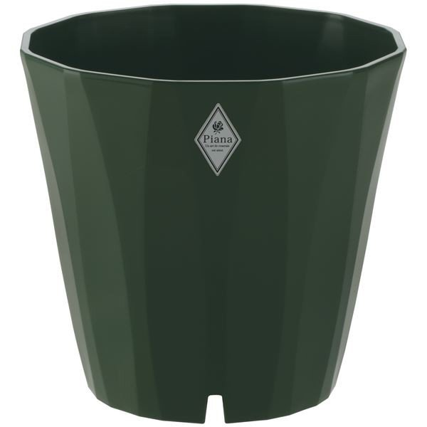 (まとめ) プラスチック製 植木鉢/ポット 〔30型 ダークグリーン〕 穴付き ガーデニング 園芸 『ピアーナ』 〔×24個セット〕