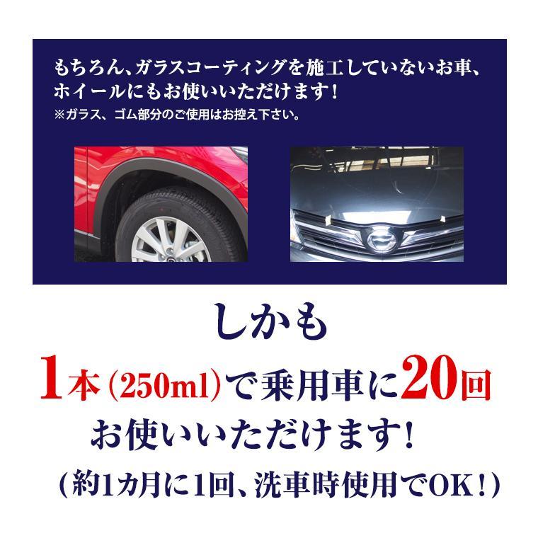 ガラスコーティング 車 ガラスコーティング剤 メンテナンス剤 ナノピカピカレイン 滑水性 スプレーして拭くだけ簡単コーティング! 送料無料 TOP-KMAINTE-250|pika2rain|09