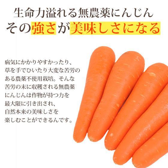 繊維入りにんじんりんごレモンジュース 1000ml×1本 栄養機能性食品 ビタミンA ストレートジュース 無農薬人参 食品 pika831 10