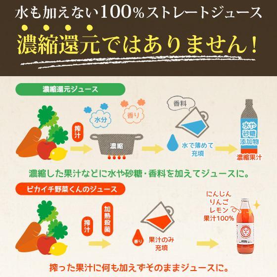 繊維入りにんじんりんごレモンジュース 1000ml×1本 栄養機能性食品 ビタミンA ストレートジュース 無農薬人参 食品 pika831 14