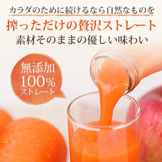 繊維入りにんじんりんごレモンジュース 1000ml×1本 栄養機能性食品 ビタミンA ストレートジュース 無農薬人参 食品 pika831 15