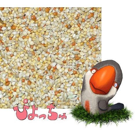 カエデ鳥・文鳥春用ブレンド 500g×2 piyocyu-ash