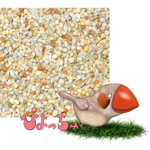 カエデ鳥・文鳥夏用ブレンド 500g×2|piyocyu-ash