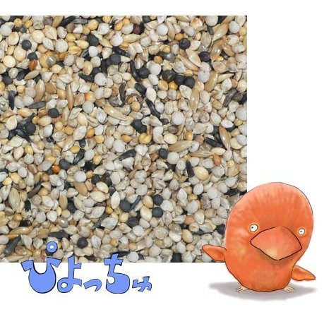 カナリヤ春用ブレンド 500g×2|piyocyu-ash