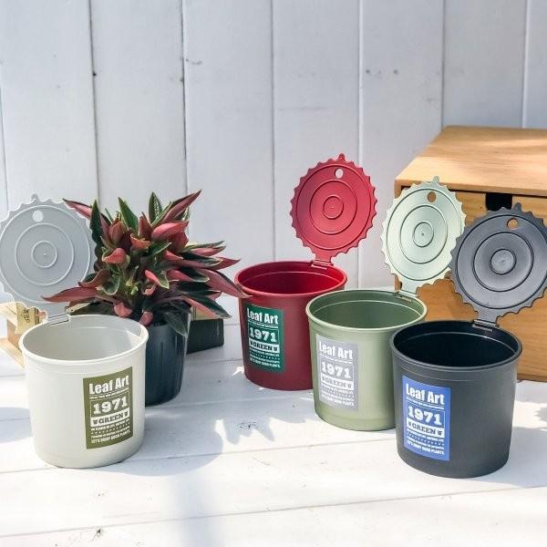 観葉植物 ペペロミア ロッソ 3.5号ポット 缶詰風鉢カバー付き 選べる鉢色 planchu 05
