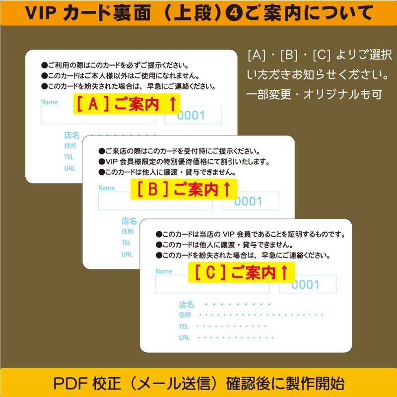 プラスチックカード プラスチック製 VIPカード003|plasticcard-ya-com|03