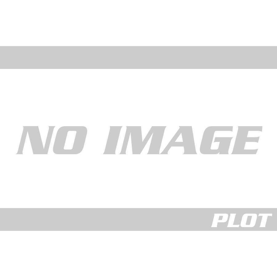 A-TECH (エーテック) F/Fキャリパーカバー(L/R ク塗)DCK KATANA カタナ