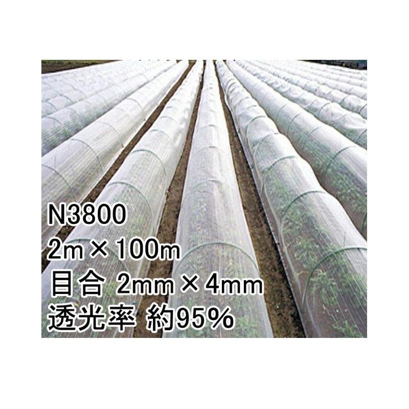 2m × 100m ナチュラル 防虫サンサンネット N3800 ビニールハウス トンネル などに 防虫ネット 日本ワイドクロス タ種 D