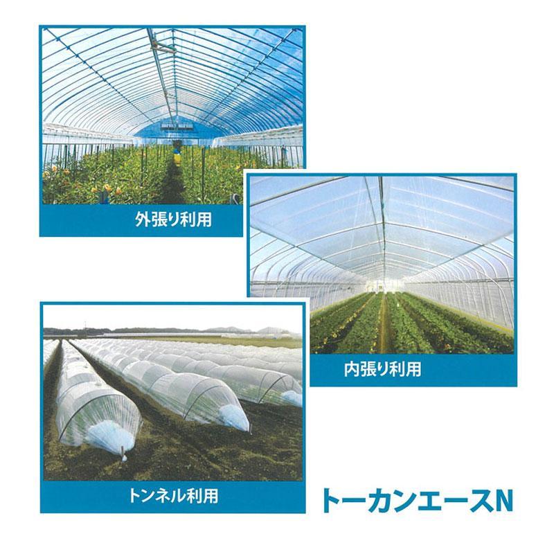 【2本】 0.05mm厚 185cm幅 100m トーカンエースN 農PO 透明 シングル巻 東罐興産 カ施【代引不可】