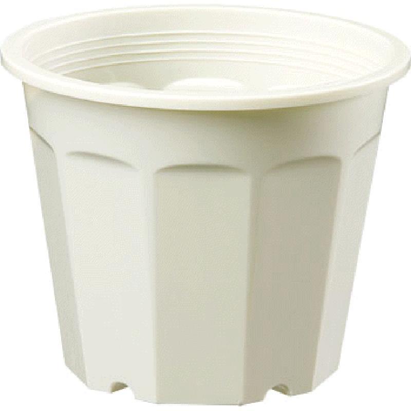 【150個】 花鉢 6号 クリーム ポット 鉢 種まき 挿し木 多用 ヤマト タ種 【送料無料】【代引不可】 大和