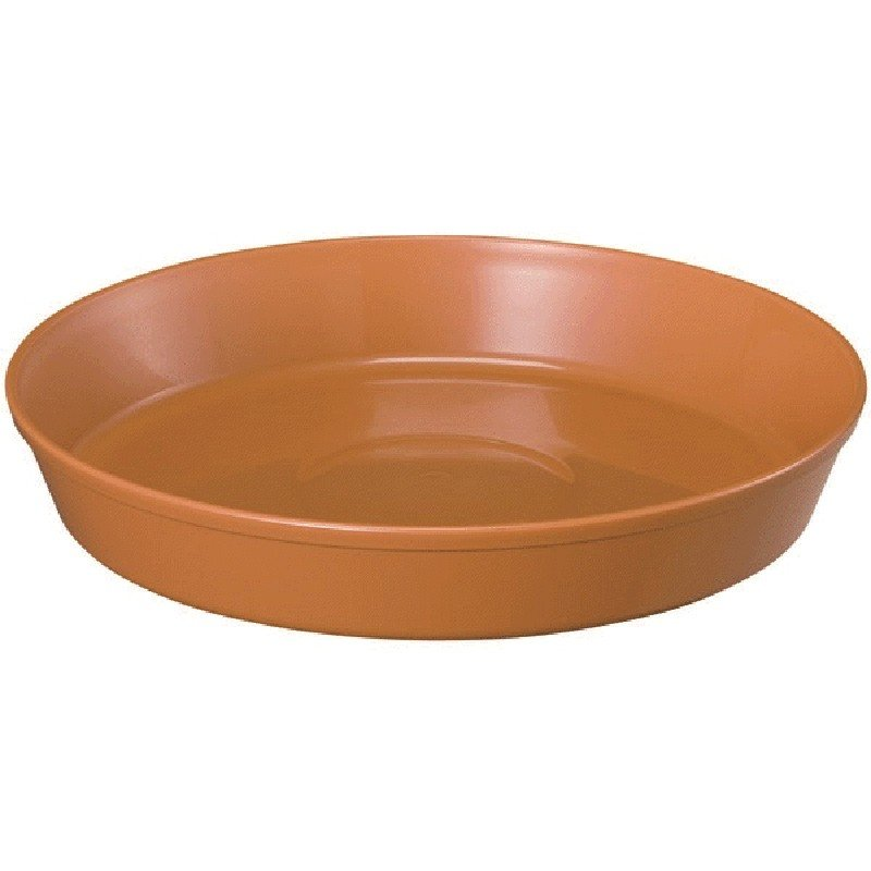 【80個】 浅皿 9号 ブラウン ポット 鉢 様々なサイズ ヤマト タ種 【送料無料】【代引不可】 大和