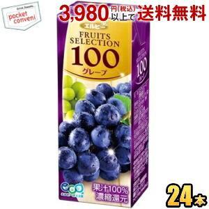 エルビー フルーツセレクション グレープ100% 200ml紙パック 24本入 (果汁100%ジュース ぶどうジュース)|pocket-cvs