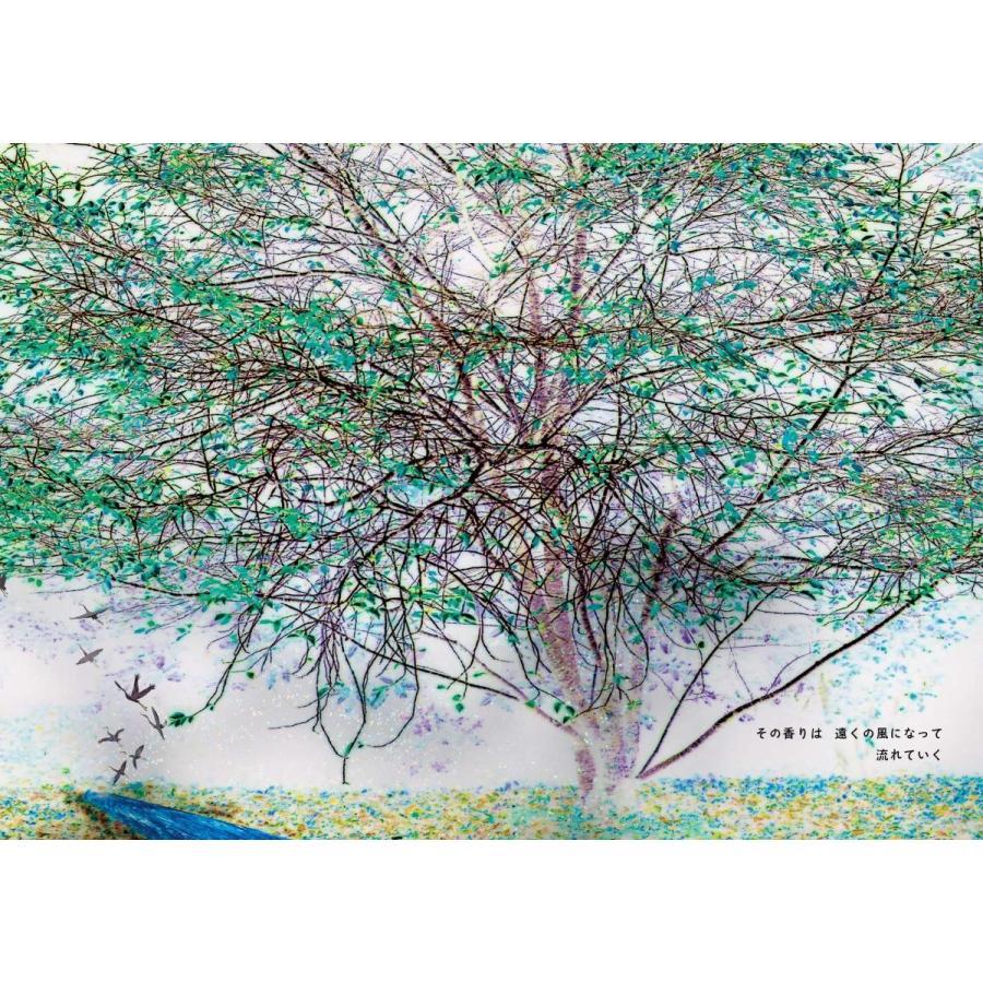 【ショップ限定生プリント付】KOMOREBI BLACK  記憶を吸う森|poempiecestore|06