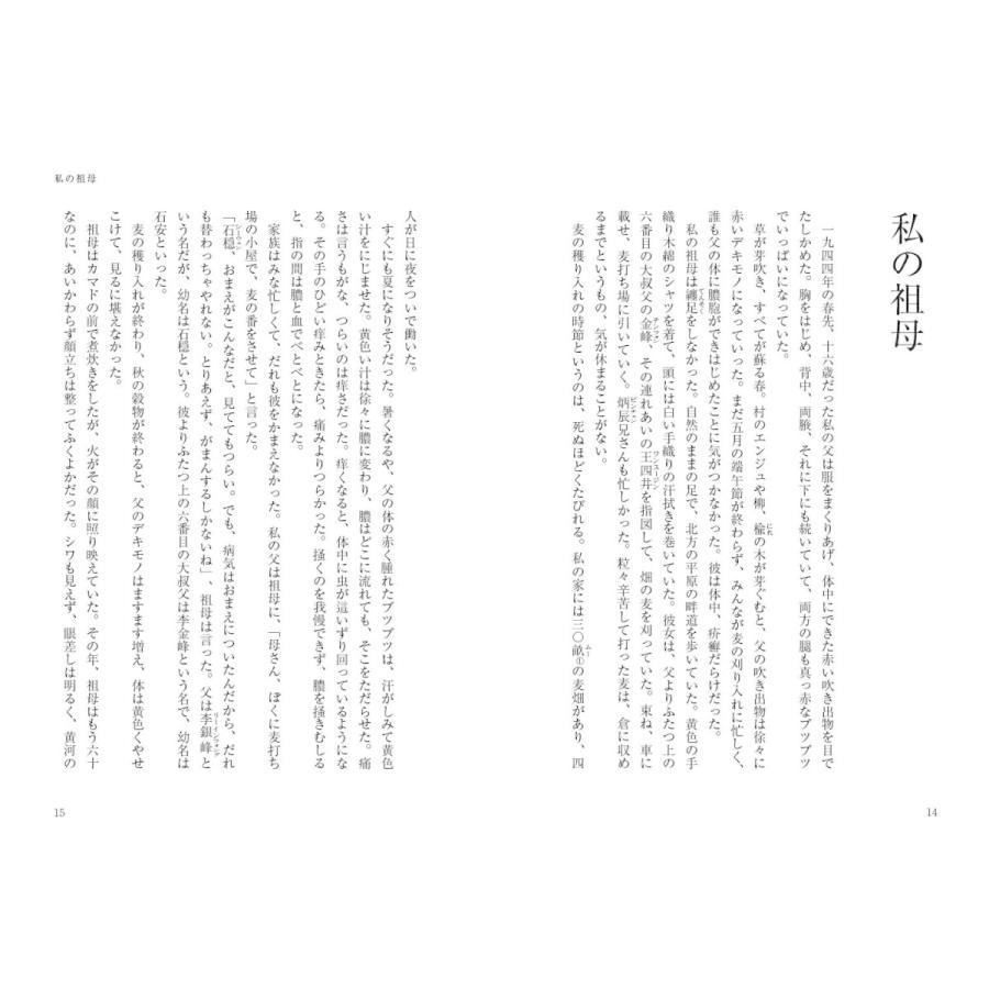 時間の入り口 (シリーズ現代中国文学 ~中国のいまは広東から~)|poempiecestore|07