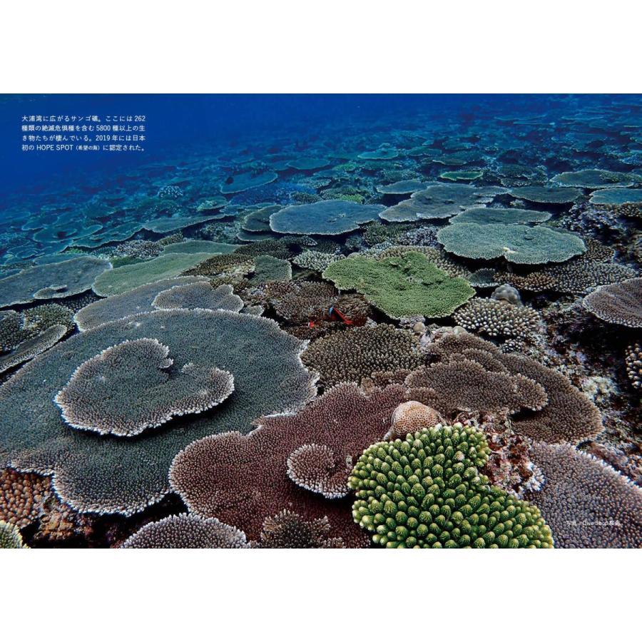 The HOPE of HENOKO 〜辺野古・美ら海からのメッセージ (ビジュアルガイドシリーズ)|poempiecestore|03