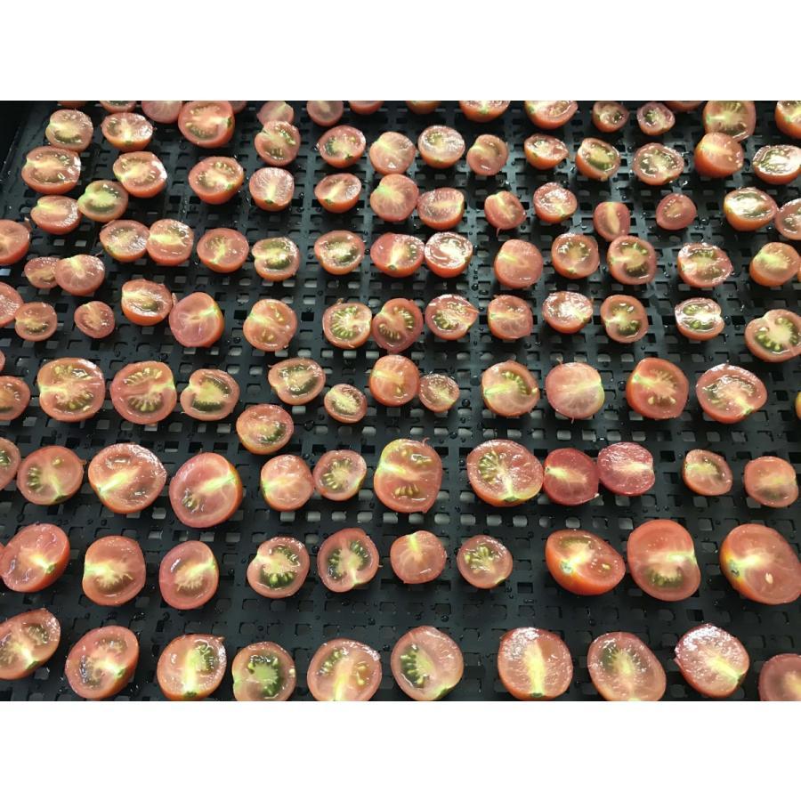 [無農薬] 濃厚完熟ドライフルーツトマト  15g [旨味凝縮] ponpokomura-kisarazu 08
