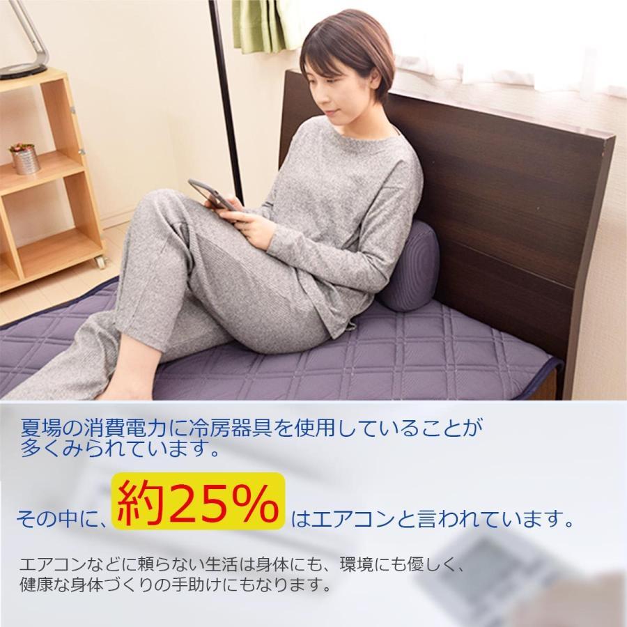 ごろ寝 枕 接触冷感 腰枕 クッション Qmax 0.42 低反発 ストライプ柄 裏メッシュ 通気性抜群 極冷 介護 節電対策 【冷たくてごろ寝・750349】 poruchan0820 05