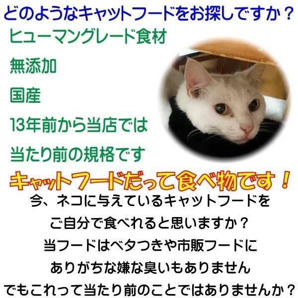 国産 無添加 愛猫の健康を考えた キャットフード【 ねこのまんま 】 800g3個セット 高たんぱく 低脂肪 グルテンフリー ドライフード 全年齢対応|potitamaya-y|05