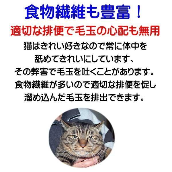 国産 無添加 愛猫の健康を考えた キャットフード【 ねこのまんま 】 800g4個セット 高たんぱく 低脂肪 グルテンフリー ドライフード 全年齢対応|potitamaya-y|11