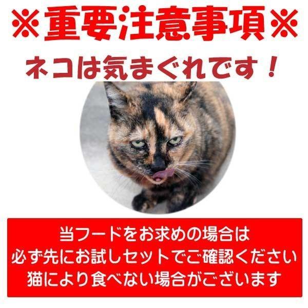 国産 無添加 愛猫の健康を考えた キャットフード【 ねこのまんま 】 800g4個セット 高たんぱく 低脂肪 グルテンフリー ドライフード 全年齢対応|potitamaya-y|04