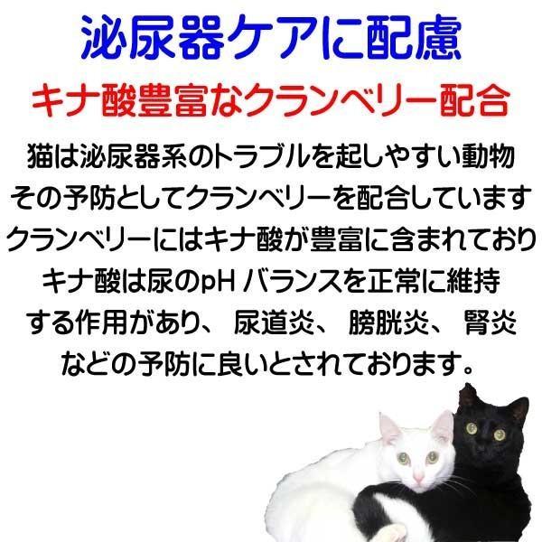 国産 無添加 愛猫の健康を考えた キャットフード【 ねこのまんま 】 800g4個セット 高たんぱく 低脂肪 グルテンフリー ドライフード 全年齢対応|potitamaya-y|10