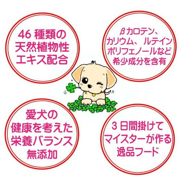 国産国産 無添加 自然食 健康 こだわり食材  【 お米のドッグフード 】 鶏肉タイプ 800g 4個セット (3.2kg) ドックフード (犬用全年齢対応)|potitamaya-y|07