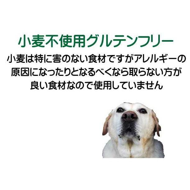 国産 無添加 自然食 健康 こだわり食材  【 お米のドッグフード 】 鶏肉・馬肉 800g 4個セット (3.2kg)  ドックフード (犬用全年齢対応) potitamaya-y 12